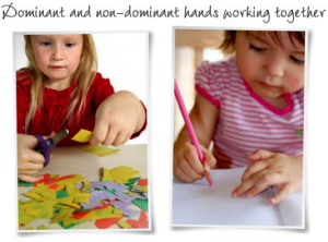 Dominant and Non-Dominant Hands Working Together